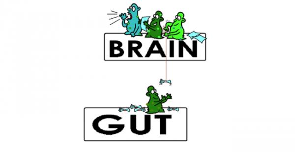 IMMHカンファレンス2016報告書 第二弾「精神疾患とMGB軸(マイクロバイオーム・腸・脳)の関連性」